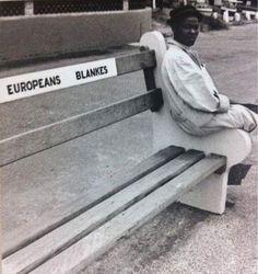 #حضارتهم رجل من جنوب أفريقيا خلال فترة الفصل العنصري يجلس على طرف كرسي مخصص للبيض فقط، هذا تاريخ الأوربيون ليس ببعيد