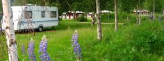 Campingplass | Vildmarken i Värmland Camping Organisation, Camping Cards, Campsite, Caravan, Tent, Alternative, Camping, Store, Tents