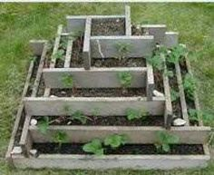My garden plan for this summer! Oh the possibilities of a square yard.