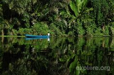 kayak-tortuguero-park