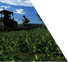 Sectores - Portal Oficial de Inversión en Colombia - Proexport Colombia