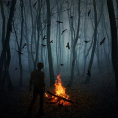 """""""Only the brave or crazy entered Ravenwood. It was like a death sentence to all who dared to enter... The ravens were surrounding him even tough the fire blazed bright."""" ©Ember Shadow"""