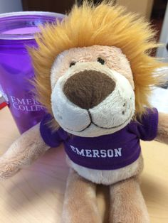 Is it hard to get into Emerson College?