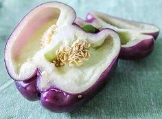 Purple Bell Pepper Recipe, Taste