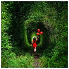 [Lugares para conhecer]  |Tunel do Amor - Tunnel Of Love] Que fica na Ucrânia na cidade de Kleven uns 350km de Kiev capital. O Túnel foi apelidado desse nome porque existe uma lenda local que se um casal atravessar ele inteiramente de mãos dadas o amor vai durar para sempre. E é por isso que é muito comum ver casais tirando fotos por lá! A melhor época do ano pra visitá-lo é no verão pois a vegetação está como na foto!  Agora você já tem um lugar romântico para ir além de Paris né!?? Eu já…