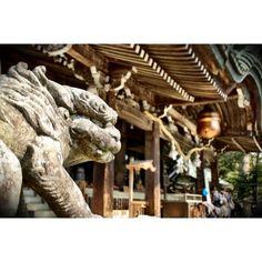 # japan # tsukuba # shrine # shinto shrine Mt @ foo dog foo dog