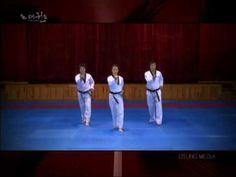 TAEGEUK 2 - Grand Master Kyu Hyung Lee - WTF Taegeuk Ee Jang