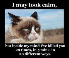 Funny pictures about You May Think I'm Calm. Oh, and cool pics about You May Think I'm Calm. Also, You May Think I'm Calm photos. Grumpy Cat Meme, Cat Memes, Funny Memes, Grumpy Kitty, Funny Quotes, Best Funny Pictures, Random Pictures, Animal Pictures, Funny Cats