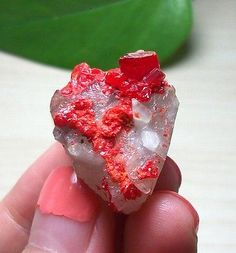 Blood-Crimson-Red-Realgar-on-Calcite-Mineral-Specimen-Shimen-Hunan-China-15-462   Size: 2.5*2.2*2.3cm   Weight: 14.3g