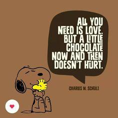 Ciò di cui ho davvero bisogno è questo amore ma un pezzo di cioccolato prima e dopo non stona ツ  Charles M. Schulz #InternationalChocolateDay #chiostrolove