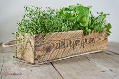 DIY déco // herbes aromatiques
