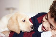 A study surveyed 12-year-old children from 77 British families who had both pets and more than one child in the household. While admittedly a small sample size, the research poses interest, partially because few have investigated the importance of relationships between children and pets in psychology