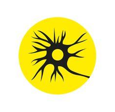 Un 5-40% de los pacientes autistas desarrolla epilepsia. Aunque generalmente se controlan bien con medicación,...