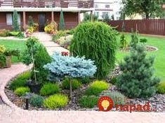 Tips for a Beautiful Backyard Garden – Handy Garden Wizard Evergreen Landscape, Front Yard Landscaping Design, Outdoor Gardens, Backyard Garden Design, Evergreen Garden, Modern Garden, Conifers Garden, Backyard Landscaping Designs, Rock Garden Landscaping