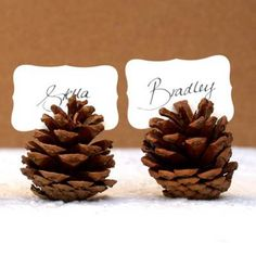 Pinecone placeholders...perfect for Thanksgiving or Christmas. (Cheap, easy, and simply elegant!)
