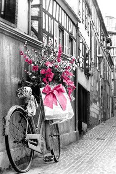Pink flowers pósters | láminas | fotos
