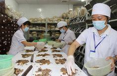Xin hỏi: địa chỉ chữa phụ khoa bằng đông y ở đâu tốt nhất? Nếu đang ở Hà Nội, bạn có thể tham khảo 5 địa chỉ khám chữa bệnh phụ khoa uy tín chất lượng sau: Hỏi: địa chỉ chữa phụ khoa bằng đông y ở đâu? viemnamphukhoa.com