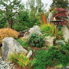 In This Asian Style Vignette, Large Boulders Anchor Plantings Of Japanese  And Siberian Irises, Which Feature Foliage Highlighted ...