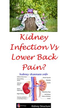 kidney disease symptoms nhs - kidney stones in men treatment.kidney infection or bladder infection 2358815758