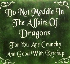 Do not meddle in the affairs of dragons. For you are crunchy and good with ketchup. Love this, except I don't like ketchup! Mustard would work. The Words, Me Quotes, Funny Quotes, Funny Phrases, Quotable Quotes, Writer Quotes, Reading Quotes, Humor Quotes, Quotes Images