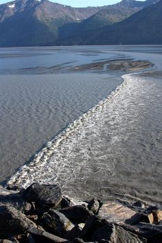 Turnagain Arm Bore Tide - Chugach State Park near Anchorage, Alaska  As High Tide returns the Bore Tides come in really really fast like a wall of water (2-6 ft high) at 10-15 mph! Amazing to see.