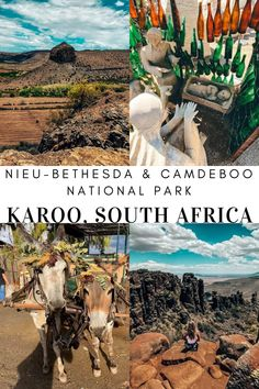 Many people travel through the Karoo to get to the coast of South Africa. Two places you should definitely stop (or even spend the nights at) are Nieu-Bethesda and the Camdeboo National Park. Africa Travel, Perfect Place, South Africa, National Parks, Places To Visit, Coast, African, People, People Illustration