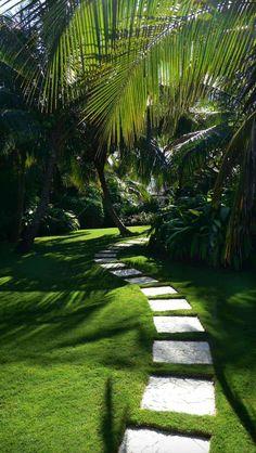 Beautiful and refreshing tropical garden landscapes: 40 best design ideas - . - Beautiful and refreshing tropical garden landscapes: 40 be . Tropical Garden Design, Tropical Landscaping, Modern Landscaping, Backyard Landscaping, Landscaping Design, Tropical Plants, Tropical Backyard, Tropical Gardens, Modern Landscape Design
