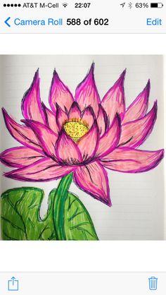 My Lotus - 8/30/14