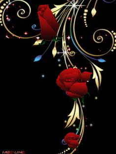Animated Roses | Animated Rose Fantasy