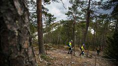 Kuusamon keväiseen maastojuoksutapahtumaan jonottaa tällä hetkellä jo 300 harrastajaa. Polkujuoksuun pääsee kuitenkin vain tuhat kilpailijaa, sillä Metsähallitus rajoittaa osallistujamäärää herkässä maastossa.