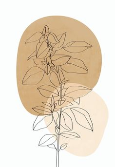 Plant Painting, Plant Drawing, Plant Art, Painting Walls, Art Abstrait Ligne, Art Mural Photo, Image Zen, Abstract Line Art, Aesthetic Iphone Wallpaper