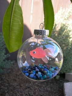 Christmas tree fish tank ornament! Omg the kids are going to love making these for the Christmas tree. Awesome DIY craft using the clear ornament balls. I am so glad I found this how cute! by Ms Chloe