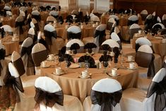 16df438d731f41 Chocolate Brown Bows on white chair covers for rent. - Special Event Linens   chairsforrent