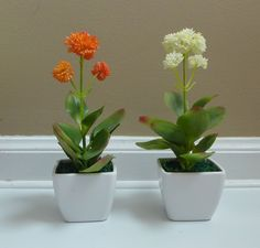 Small Artificial Desert Flower Succulent Mini Potted Plants Artificial Trees and Shrubs for Decoration Table Office Desk Kitchen Restaurant Home Decor Indoor Landsacpe Garden 1 Sets 2 Pcs 2 Color >>> Details can be found by clicking on the image.