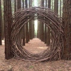 mondtor-aus-naturholz-natural-wood-moon-gate-mondtor-naturholz-this-imag/ - The world's most private search engine