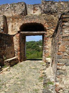 Libert Door - Fernando de Noronha, Pernambuco