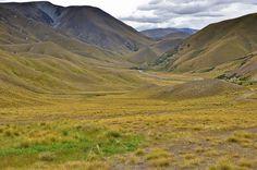 Steppenlandschaft im Waitaki District, Südinsel, Neuseeland