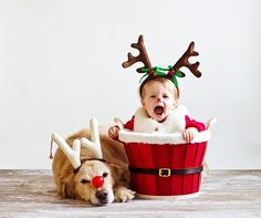 baby rudolph with dog - freaking LOVE this...get ready jack and jill!!!
