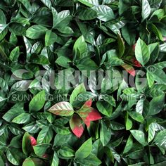 3 sqm fake foliage leaves green artificial ivy leaves for artificial garden plant decoration 25X25cm Free Shipping -G0602A002A