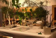 Clay table set up with clay, clay tools, paper, pens, twine, scissors, sticks & a platform in the 'trees'