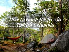 There are hundreds (thousands, even!) of free places to camp all over BC. Here's my guide to finding them and how to camp for free in British Columbia, Canada Tent Trailer Camping, Canada Travel, Columbia Travel, Canada Trip, Tofino Bc, Victoria British Columbia, Camping Essentials, Camping Ideas, Free In