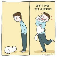 My cat& life. Crazy Cat Lady, Crazy Cats, Cute Cats, Funny Cats, Cat Anatomy, Cat Comics, Mama Cat, Owning A Cat, Funny Illustration