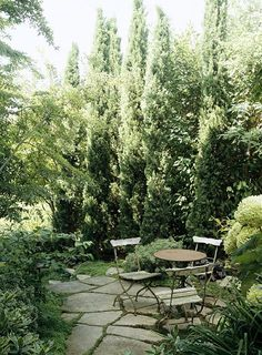 Find best selling products for the Garden http://possentonline.com/