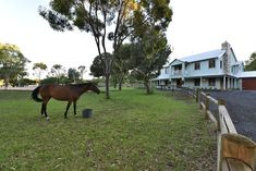Magnificent manor with a home for the horse   #WesternAustralia #Gnangara #ForSale #HorseProperty