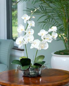 orchidées idees decoration art floral