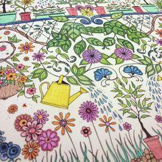 15 Best Secret Garden Coloring Pages Images On Pinterest