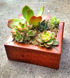 Reclaimed Wood Planter Box. $25.00, via Etsy.