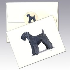 Kerry Blue Terrier Note Cards - The National Terrier of Ireland is named for the county, Kerry, where it originated as a hard working farm dog.  It's long bangs protect its eyes when it like most terriers, pokes its nose where it maybe shouldn't.