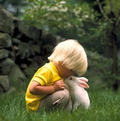 Little boy and bunny