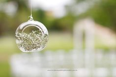 Gorgeous hanging glass globes with babies breath at a New Farm Park Rotunda wedding styled by Brisbane Wedding Decorators.  www.brisbaneweddingdecorators.com.au